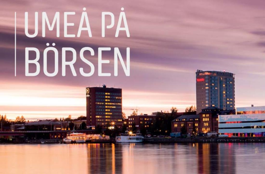 Umeå på börsen